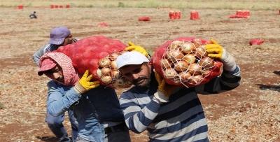Mevsimlik işçilerinin dikkatine